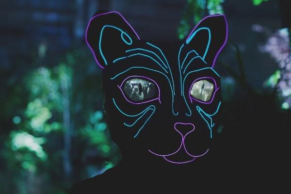 Neon cats at Winter Night Winter Lights