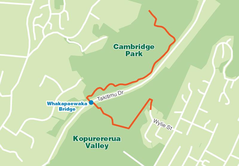 Whakapaewaka Bridge Map