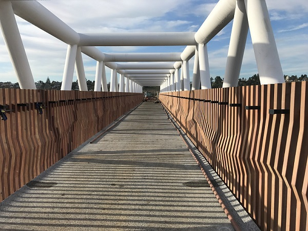 Whakapaiwaka Bridge features wooden paneling representing Kopurererua Stream eels